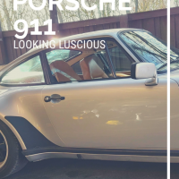 Porsche 911 Looking Luscious
